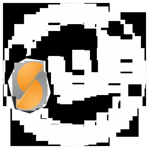 DGSS e.V. - Sprecherzieher (DGSS)